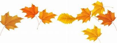 Fall Newsletters Leaves Clipart Newsletter Harvest Category