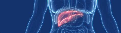 What is Viral Hepatitis? | CDC