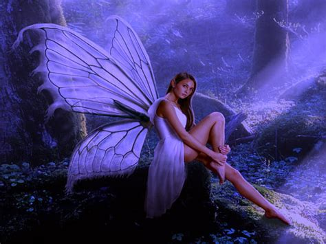 Fairies And Wallpapers Animated - free fairies screensavers and wallpapers wallpapersafari
