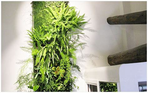 mur vegetal d interieur sp 233 cialiste du mur v 233 g 233 tal int 233 rieur mur v 233 g 233 talis 233 neogarden