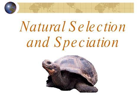 Evolution Natural Selectionandspeciation