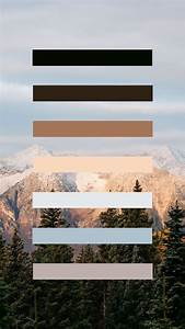 oh how i these earth tones nature color palette