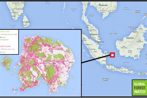 pulau belitung mongabay co id