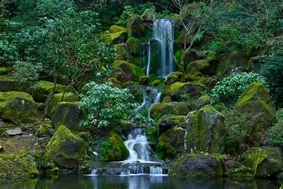 Nature Oregon Portland Japanese Moss Waterfalls Gardens