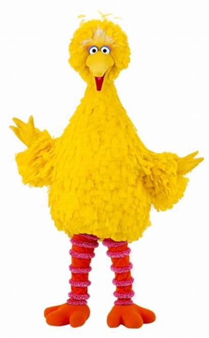 Bird Sesamstraat Amerika Raar Familie Street Character