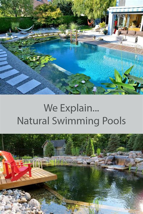 Best 10 Swimming Pool Pond Ideas On Pinterest Natural