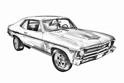 Muscle Nova 1969 Chevrolet Yenko Illustration Cars