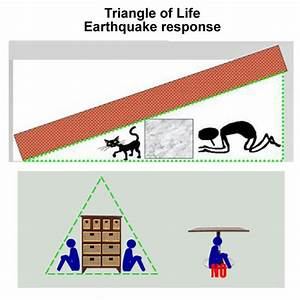 Triangles Of Life