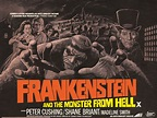 TERENCE FISHER'S FRANKENSTEIN AND THE MOSTER FROM HELL ...