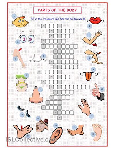 parts   body crossword worksheet  esl printable