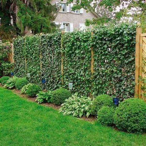 jardines verticales en casa son tendencia el parana diario