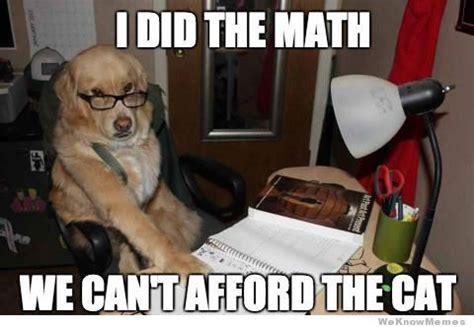 Pet Insurance Meme - get help paying vet bills little creek veterinary clinic