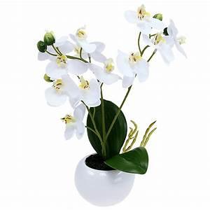 Künstliche Orchideen Im Topf : orchideen im topf 30cm wei preiswert online kaufen ~ Watch28wear.com Haus und Dekorationen
