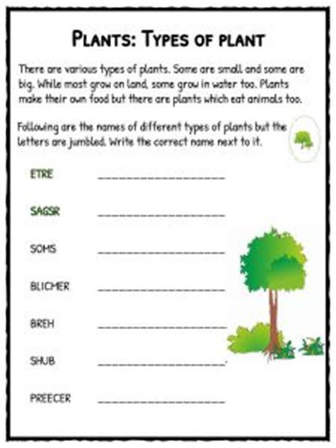 plant worksheets plant life cycle worksheet kidskonnect