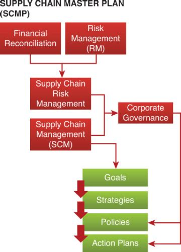 supply chain master plan supply chain  shareholder