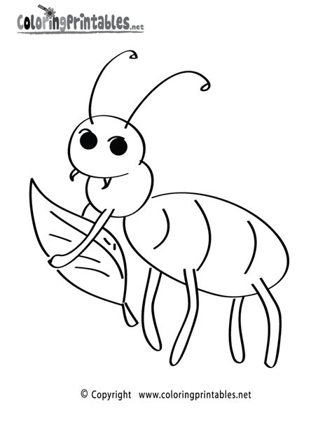 insects coloring pages getcoloringpages 391 | 4vs46il