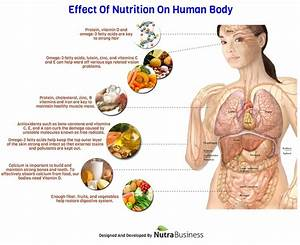 Effect Of Nutrition On Human Body
