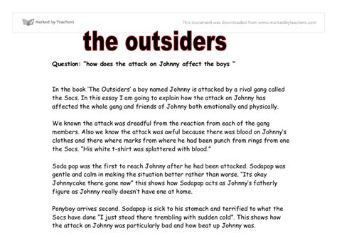 The Outsiders Overview by Free Sle College Admission The Outsiders Essay Topics