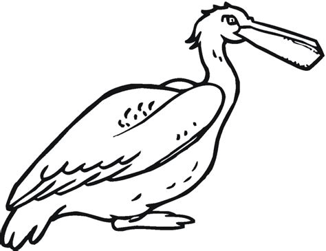 Pelican With Fish.svg.hi Coloring Page