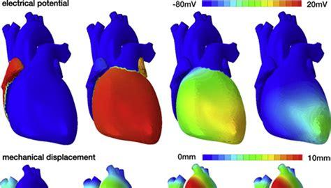 dassault si鑒e social un cuore 3d per la diagnosi e la cura delle cardiopatie sociale it
