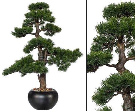 Ikea Bonsai Baum by Bonsai Txtorg Org