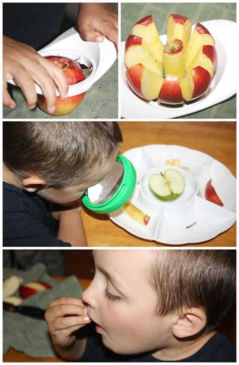 apple science activity preschool apple theme for fall 333   Apple Science Activity Preparing Apple Examining Apple And Tasting Apple