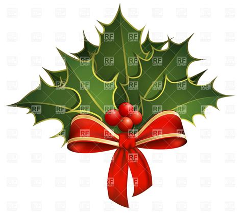 christmas decoration  holly branches  bow vector