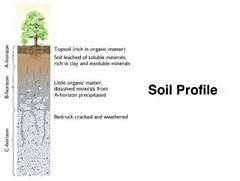 Worksheets Soil Profile Worksheet gallery for soil horizons worksheet layers profile