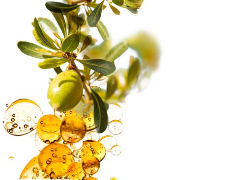 olive oil beauty tips