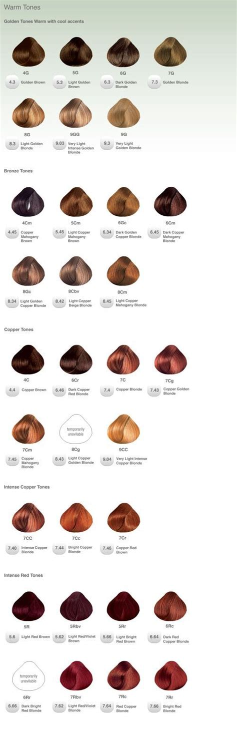 Swatches Of Hair by Best 25 Hair Color Swatches Ideas On Awesome