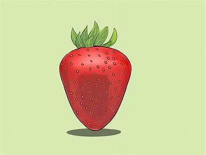 Draw Strawberries Step Drawing Zeichnen Fragola Wikihow