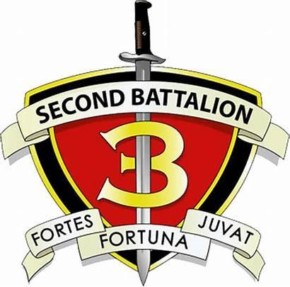 Marines Battalion 3rd 2nd Usmc Regiment Infantry