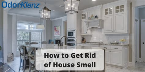 how to get rid of house odor how to get rid of house smell