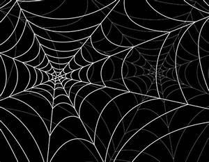 spiderweb design elements vector 05 - Vector Other free ...