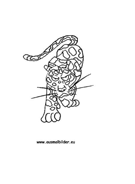 ausmalbilder jaguar jaguar malvorlagen