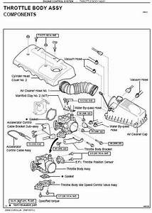 Repair-manuals  Toyota Echo 2000