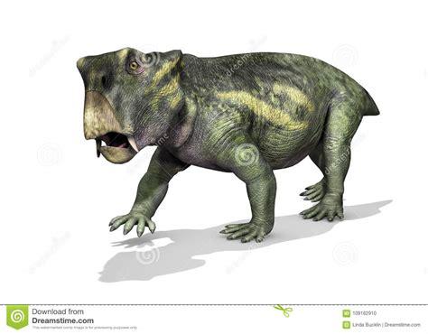 Lystrosaurus Dinosaur Stock Illustration. Illustration Of