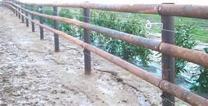 Piquet En Bois Pour Cloture : piquet de cloture bois pour chevaux ~ Farleysfitness.com Idées de Décoration