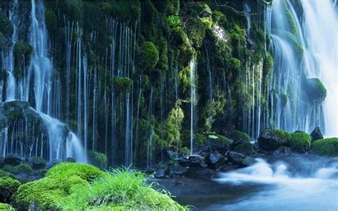 green forest waterfall wallpaper high quality nature