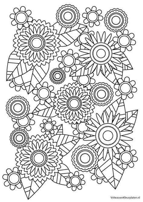 Kleurplaat Voor Volwassenen by Kleurplaten Bloemen Voor Volwassenen Omj67 Agneswamu