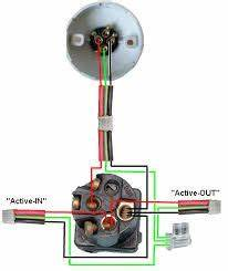 Australian Light Socket Wiring Diagram