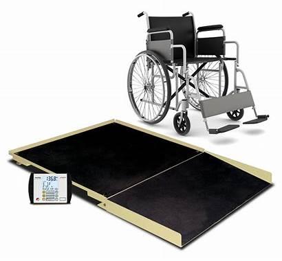 Wheelchair Scale Fhd Ii Detecto Platform Chair