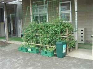 Automatische Bewässerung Zimmerpflanzen : automatische bew sserung ohne strom growfix ~ Orissabook.com Haus und Dekorationen