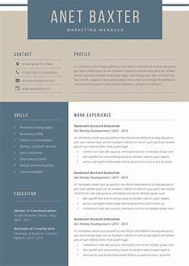 English Cv Template Word Marketing Resume Word Template Download For Word