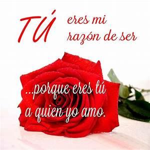 Imagenes Romanticas De Rosas Rojas De Amor Con Movimiento