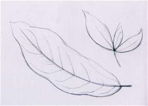 sehelai daun belajar menggambar
