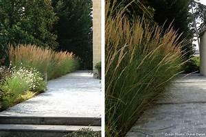 les 46 meilleures images du tableau vivaces graminees i With idee allee de maison 16 5 facons de mettre en scane les graminees detente jardin