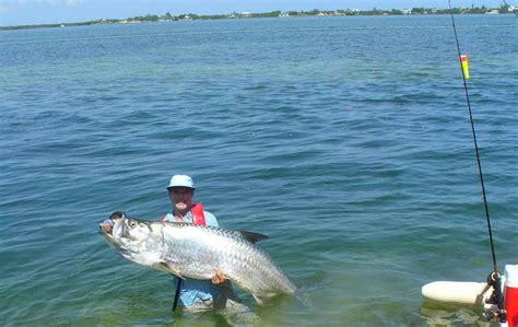 goliath weight grouper 3k lbs