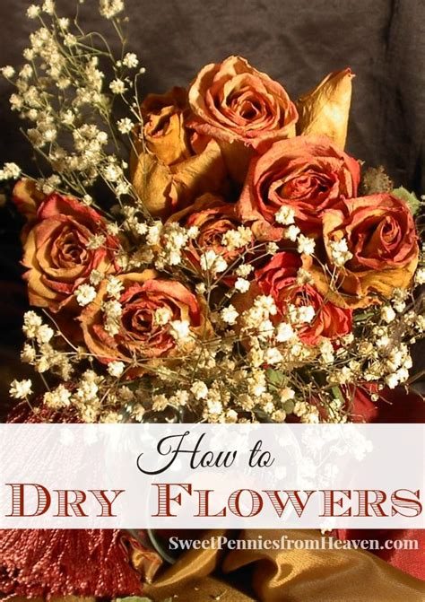 Potpourri Zum Selbermachen by How To Flowers For Crafts Potpourri Or Other Home