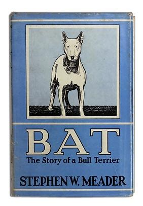 bat  story   bull terrier  stephen  meader